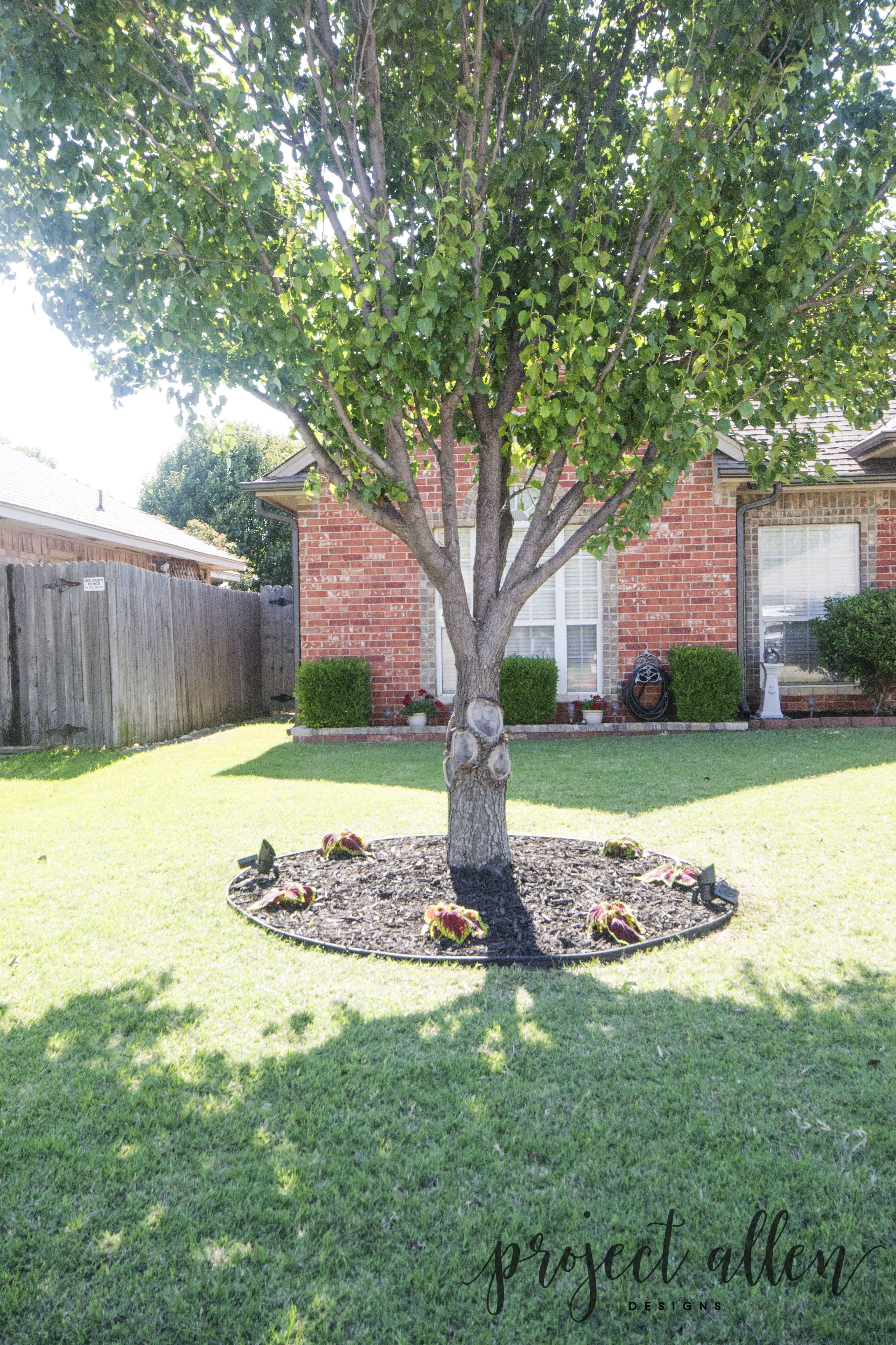 Project-allen-designs-front-yard-updates-9.2 • Project